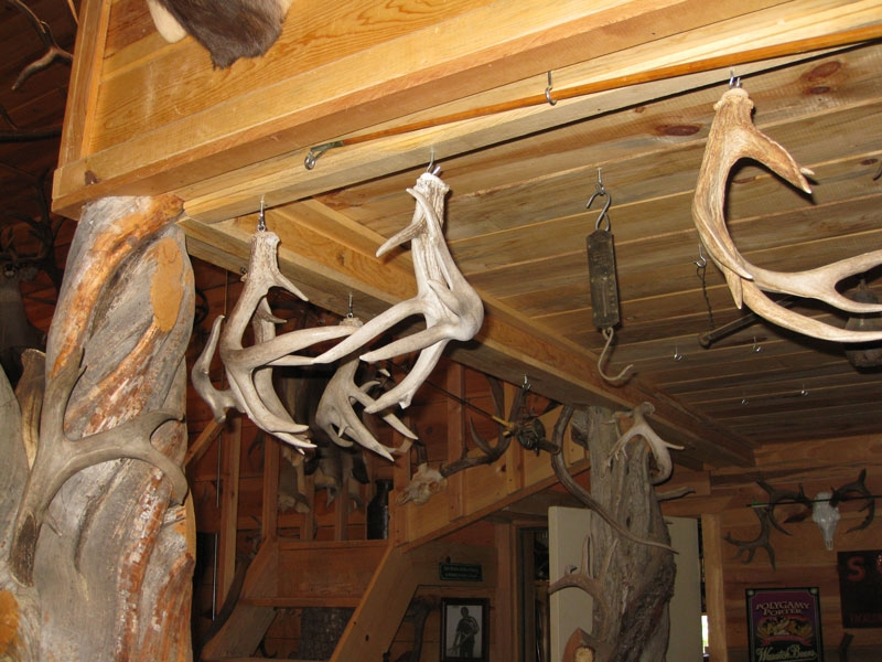 coues-shed-antlers-barn